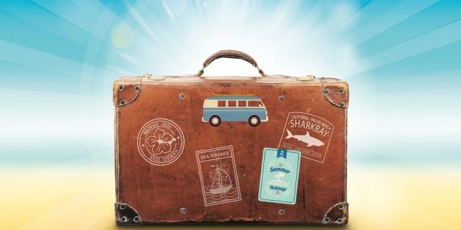Ein Reisekoffer als Sinnbild für Barfen auf Reisen
