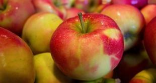 ein Haufen Äpfel als Sinnbild für Apfelessig