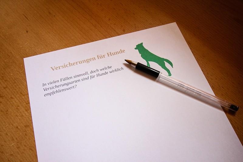 ein Sinnbild für einen Versicherungsvertrag