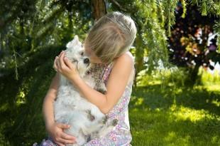 ein Mädchen küsst seinen Hund