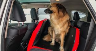 Erfahrungsbericht: Travelmat Rücksitzmatte fürs Auto